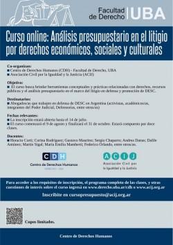 Curso on line: Análisis presupuestario en el litigio por derechos económicos, sociales y culturales