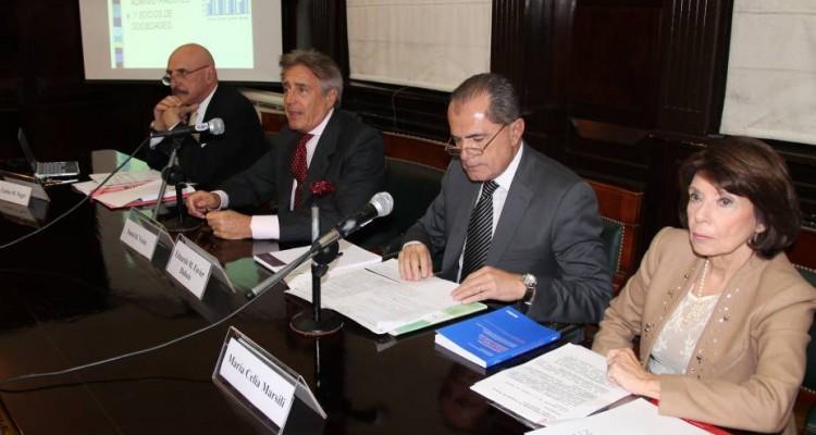 Carlos M. Negri, Daniel R. Vítolo, Eduardo M. Favier Dubois y María Celia Marsili