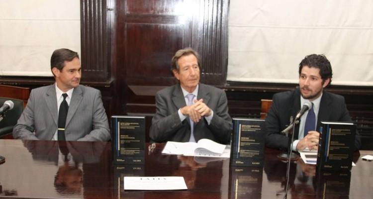 Pablo L. Manili, Leandro Despouy y Damián R. Pizarro