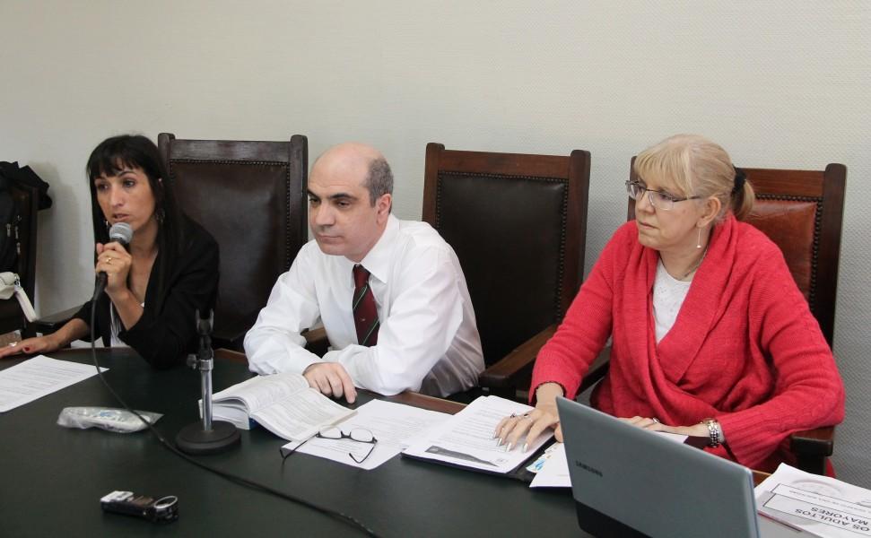 Natalia E. Torres Santomé, Néstor Solari y Lidia Garrido Cordobera