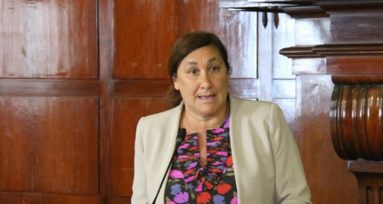 Silvina González Napolitano