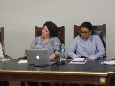 María de los Ángeles Ramallo, María Victoria Castro, Lina Fernanda Buchely Ibarra y Laura Pautassi
